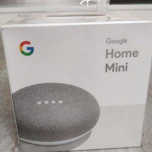 Google Home Mini - Color Chalk